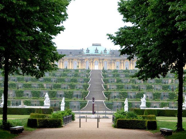 今回のベルリン旅行の目的はなんと言っても近郊のポツダムにあるサンスーシ宮殿です。<br /><br />高校時代に世界史の授業でバロック建築の代表がベルサイユ宮殿でロココ建築の代表はサンスーシ宮殿と教わりました。<br />その時からサンスーシ宮殿に行ってみたいと思い続けていました。<br />今回念願かなって初めてこの宮殿を訪れることができました。<br /><br />ところが行ってみるとこの場所は宮殿がいくつも立ち並び、さながら宮殿コンプレックスとでもいう様相を呈していました。<br />新宮殿、オランジュリー、新迎賓館、中国茶館などが広大な敷地に点在しています。<br /><br />おかげで思ったより時間がとられてしまいましたが・・・・