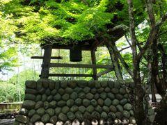 田舎者、初夏の修善寺へ行く♪