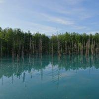 2016年6月 美瑛旅行記(丘のまちびえいヘルシーマラソン参加)� 帰るだけの最終日&青い池