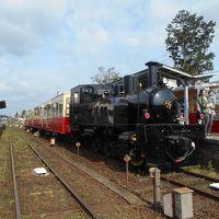 楽しい乗り物に乗ろう!  小湊鉄道「里山トロッコ」  ~市原・千葉~