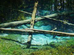 楽しんだぜ!! 2016 北海道  『神の子池の水は透明度も有り凄くきれい♪天気の網走監獄もよかった♪稚内までオホーツク海沿いを走り約7時間で稚内に到着☆』 IN 神の子池、網走