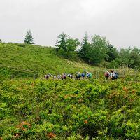 レンゲツツジが全山朱色に染める甘利山・千頭星山に登る
