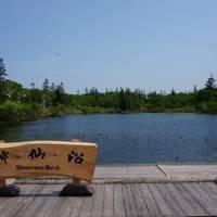 *泥温泉と食事を楽しむ「月美の宿 紅葉音」&散歩日和の神仙沼へ♪初夏のニセコで誕生日&マタニティ旅行記編
