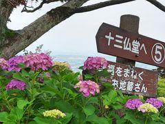 梅雨の合間に紫陽花を見に【善峯寺】へ