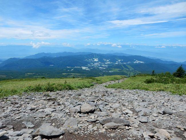 東京近郊は朝から30℃を超え、昼間は熱中症になりそうなくらいの高温高湿度でしたので脱出するため、久しぶりに登山らしい登山に出かけました。<br />梅雨が明け、絶好の晴天下の日に登った山は、100名山にも入っている四阿山。群馬県と長野県境にあるこの百名山と根子岳は緑が美しい登山コースで良い運動にもなり、一石二鳥でした。<br /><br />---------------------------------------------------------------<br />スケジュール<br /><br />7月25 日 自宅-(自家用車)上信越自動車道上田菅平IC-菅平牧場口-      (登山)-根子岳-四阿山-菅平牧場口-(自家用車)渋沢温泉<br />     -関越自動車道渋川IC-自宅