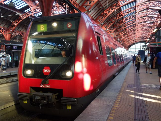 だって,デンマーク語がぜんぜんわからないのですから。でも,いろいろな列車が見れました。
