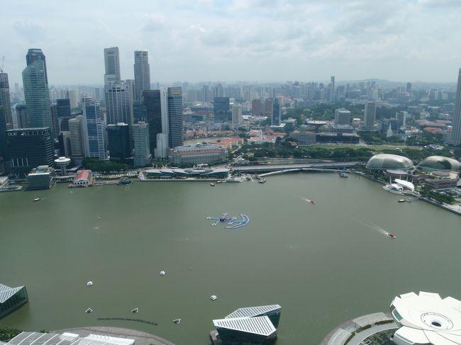 ★概要<br />2014年8月2日(土)<br />帰国もシンガポール経由。<br />シンガポールには朝到着で夜出発なのでほぼ1日の空き時間がある。<br />というわけで定番観光地、マリーナベイサンズの屋上へ。<br /><br />★全体概要<br />前年に念願だったマチュピチュへ行ったので、今回は「アジアのマチュピチュ」と評されることもあるシギリヤロックがあるスリランカへ。<br />コロンボ、キャンディ、ダンブッラ、シギリヤを回った一人旅。<br />シンガポールを経由したのでチョット寄り道も。<br />本文中の金額レートは旅行当時のもの。