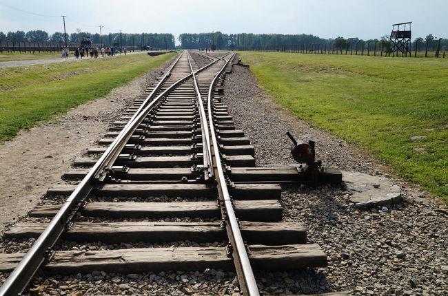 オシフィエンチムはポーランド南部の田舎町で、1939年、ナチス・ドイツがポーランドの西半分を占領した当時の人口は12000人ほど。占領に伴いナチスに反抗する大量のポーランド人の逮捕者が出たが、既存刑務所では収容しきれなくなってきていた為、翌年、SS最高司令官ハインリッヒ・ヒムラーはオシフェンチムにあったポーランド軍の兵舎を転用、強制収容所として使うこととした。それ以後、オシフィエンチムはドイツ語読みでアウシュヴィッツと呼ばれるようになった。<br /><br />やがて、ヨーロッパのほとんどがナチスの占領下となると、ポーランド人、チェコ人、ロシア人、そしてユダヤ人などが収容されるようになり、被収容者の増加に対処するため、3kmほど離れた場所にビルケナウ第2強制収容所が造られる。そして、アウシュヴィッツ・ビルケナウ強制収容所は、ナチスの言う「ユダヤ人問題最終解決」に向けた絶滅収容所へと変貌していく。<br /><br />写真はアウシュヴィッツ第2収容所となった、ビルケナウ強制収容所に現存する引込み線。この冷たく光るレールの上を、気が遠くなるほど大勢の人々を乗せた貨車が何台も通過したのだ。<br />