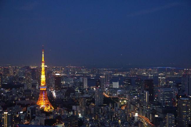 六本木ヒルズの屋上にあるスカイデッキです!<br />約270メートルのオープンデッキとしては、日本では一番高い様です。<br />室内とは違い外の風を感じながらの夜景は一見の価値はあると思います。<br />ただし有料なので、HPで確認されたからの訪問をお勧めします。