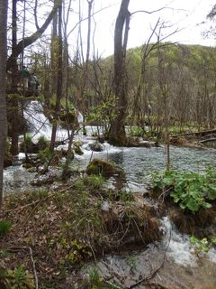 Day 4-2 旧ユーゴスラビア4ヶ国旅行記~HR・BA紛争から20年~ (クロアチア プリトヴィッツェ湖群国立公園)