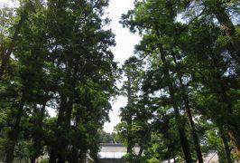 2016梅雨、東北のお寺巡り(18/22):7月1日(8):松島・瑞巌寺(3):瑞巌寺洞窟群、西国三十三観音像巡礼所