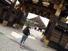 京都・二条城 日本の美を再び味わう