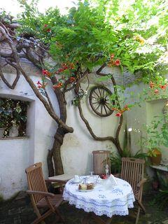 夏の優雅な南イタリア周遊旅行♪ Vol40(第4日) ☆Lucera:ルチェーラのパラッツォホテル「Le Foglie di Acanto」素敵な朝食♪
