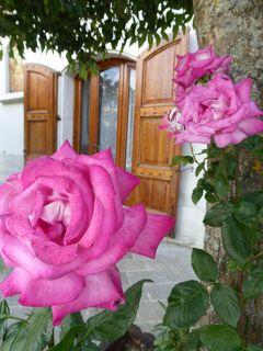 夏の優雅な南イタリア周遊旅行♪ Vol52(第4日) ☆Roseto Valfortore:バラの村と呼ばれる美しき「ロゼート・ヴァルフォルトーレ」♪
