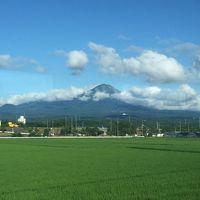 山陰のたび。米子皆生温泉と日本一の庭園を眺める足立美術館へ。