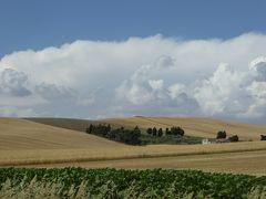 夏の優雅な南イタリア周遊旅行♪ Vol58(第4日) ☆Troia→Bovino:黄金色の麦畑の中を美しき村「ボヴィーノ」へ走る♪