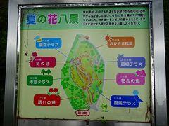 万博記念公園(5) 夏の花八景 上巻。