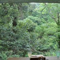 週末温泉旅 in 伊豆・湯ヶ島温泉 ~ オーベルジュ・アルカナイズでのんびり。