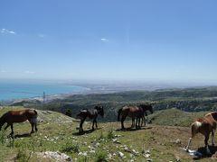夏の優雅な南イタリア周遊旅行♪ Vol79(第5日) ☆Monte Sant'Angelo:絶景と馬の見事なコラボレーション♪