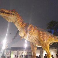 恐竜博物館と六呂師高原キャンプ