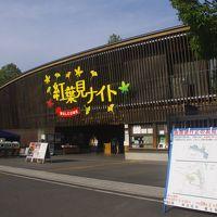 国営武蔵丘陵森林公園 紅葉見ナイト