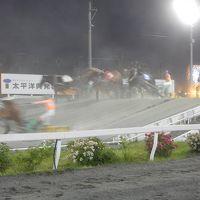 ラベンダーの季節の北海道 ?ばんえい競馬・花畑牧場・そしてぽっぽや?