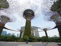 シンガポール 2泊5日 vol.8 最終日まずはガーデンズバイザベイへ