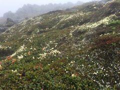 昨年に続き大雪山縦走 ~旭岳から富良野・原始ケ原へ~