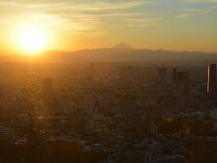 東京・六本木「森タワー・けやき坂」