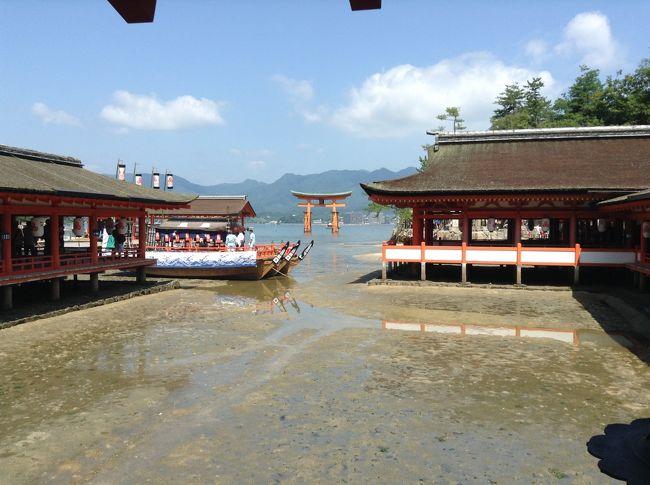 広島市からJRとフェリーを乗り継いで宮島に到着。<br /><br />さすが世界遺産があるだけに外国人観光客でいっぱいでした。