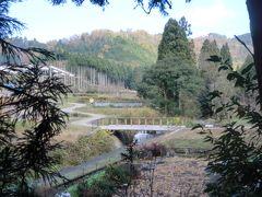 湖北の山里・己高山廃寺‐紅葉で有名な鶏足寺‐を訪ねて......