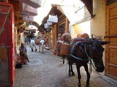 ちょこっとモロッコ。3 (世界遺産フェズ)