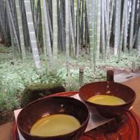 鎌倉_Kamakura 武家の古都!源頼朝により幕府が開かれ、水戸黄門により観光を広められた町