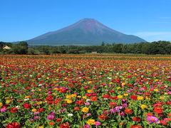 花の都公園と明野ひまわり