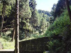 ご近所源流ツアー第3弾 ~ 境川源流地にキノコの楽園を見た