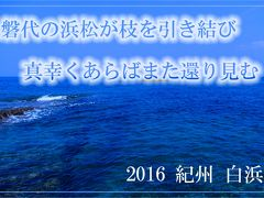 磐代の浜松が枝を引き結び真幸くあらばまた還り見む ~2016 紀州 白浜~