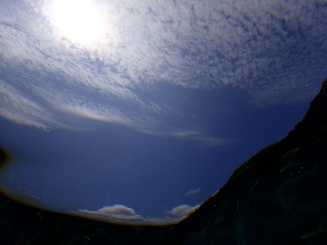 梅雨の晴れ間を狙って沖縄に来ました。今年の初ダイビングです。<br /><br />今回のプランは、<br />1日目:真栄田でダイビング<br />2日目:残波岬でダイビング<br />3日目:万座でダイビング<br />4日目:真栄田岬でシュノーケリング<br />という、海三昧です。最終日はドライブか海かでいつも迷うのですが、今回は天気が良くて海も穏やかだったので最後まで海を満喫できました。<br />こちらは、4日目の旅行記です。