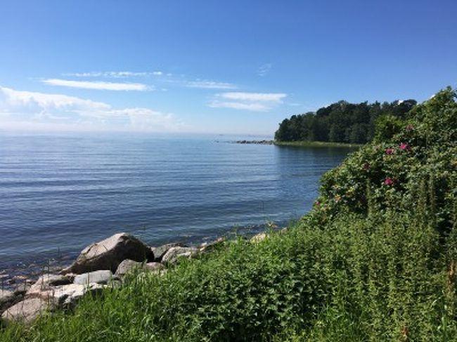 暮らす気分でヘルシンキ2016夏/Day4 & 5-1 療養とラウッタサーリ島概略^^;