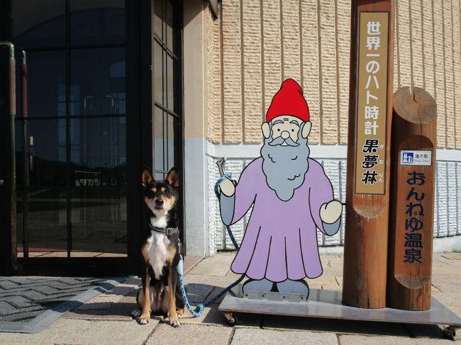函館、積丹、ニセコ、登別、富良野と車中泊を続けてきて、もう旅行もあと数日。<br />今回初めての地、北見市の温根湯温泉。いいところでした。<br />