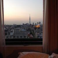 スカイツリーと東京タワーを眺める旅
