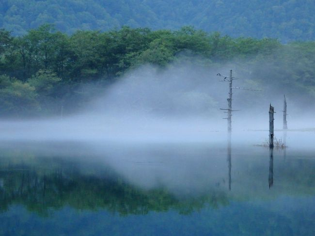 今年の夏旅は久しぶりの上高地へ!<br />上高地に泊まって星を見たい、朝もやの大正池を見たい、行ったことのない平湯温泉や畳平、松本にも行ってみたい~!と行程をあれこれと考えた末、新宿から上高地への直通夜行バス・さわやか信州号で出発して、大正池で下車。<br />見たいと思っていた朝もや漂う大正池を目にして感動した後は、大正池~ウェストン碑~河童橋と自然探究路を歩きました。<br />朝の上高地の風景を楽しんだ後は、一度上高地を離れて、バスで平湯温泉へ向かいます。(翌日、また上高地へ戻ります…)vol.1はここまでの記録。<br />よろしければご覧ください。<br /><br />【旅程】<br />--- vol.1 ---  http://4travel.jp/travelogue/11159610<br />8/12 バスタ新宿発~(さわやか信州号)<br />8/13 ~大正池下車 <br />    <ハイキング(大正池→河童橋)><br /><br />--- vol.2 ---  http://4travel.jp/travelogue/11161623  <br />   上高地BT~平湯温泉BT~畳平BT <br />    <富士見岳・お花畑><br />   畳平BT~平湯温泉BT 〔平湯温泉・旅荘つゆくさ 泊〕<br /><br />--- vol.3 ---    http://4travel.jp/travelogue/11163443<br />8/14 平湯温泉BT~上高地BT <br />    <ハイキング(河童橋⇔明神池)> <br />    <ガイドツアー・ナイトコース> 〔上高地・五千尺ロッヂ 泊〕<br /><br />--- vol.4 ---    http://4travel.jp/travelogue/11167095<br />8/15  <ミニハイク(河童橋⇔田代橋><br />   上高地BT~新島々~松本 <br />    <松本城など散策><br />   松本~(JR)~ 新宿 <br />