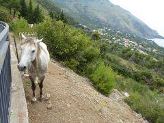 夏の優雅な南イタリア周遊旅行♪ Vol218(第12日) ☆Maratea→Sapri:魅惑のチレント海岸へ目指して♪