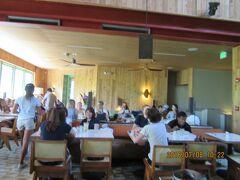 陰陽道開運旅行: ハワイ レストラン:bills Sydney