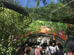 猛暑の京都で大人な旅? その1  下鴨神社御手洗祭と嵐山の鵜飼