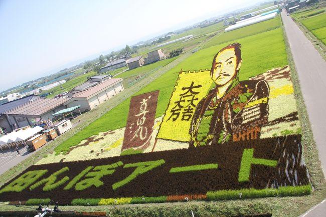 201608-07_田舎館村の田んぼアート Tanbo Art in Inakadate Village in Aomori