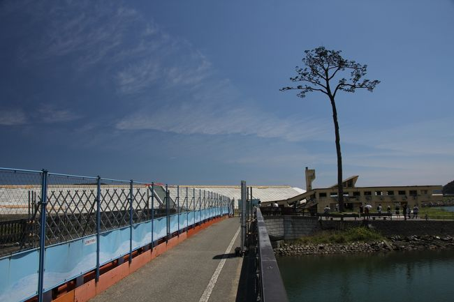 8/11<br />山の神温泉『優香苑』の宮大工による純和風建築はどこを見ても素晴らしかったです。お料理もおいしかったのですが、露天風呂がアブの大量発生により入れなかったのがちょっと残念。<br />ここも冬に来たら雪見風呂に入れそうです。<br /><br />花巻・遠野で宮沢賢治の足跡をたどるのも興味があったのですが、東北の震災跡を見ていなかったので、今回の旅行ではそちらを優先して回ることにしました。<br />まずは大船渡の碁石海岸へ。碁石海岸は遊歩道が整備されていて、絵画イン沿いの高台を散策できるようになっています。<br />きれいな青い海を見ることができますが、この海から津波が発生して多くの方が命を落としたのかと思うと自然は美しくもあるが、また脅威でもあると思い知らされます。<br /><br />碁石海岸を跡にして、陸前高田の「奇跡の一本松」を見に行きました。<br />一本松のまわりには何もありません。ここに陸前高田の街があり、鉄道が通っていたのかと思うと胸が締めつけられます。<br />復興はまだまだ進んでいませんでした。5年経ったというのに…。<br />見たくない現実ではありますが、目をそむけてはいけない、忘れてはいけない場所だと痛感しました。<br /><br /><br /><br />===2016年8月東北旅行の概要===<br /><br />8/5 自宅→秋田<br />秋田竿燈祭り(移動距離約600キロ/秋田泊)<br /><br />8/6 秋田→弘前<br />五能線沿いドライブ・十二湖、不老不死温泉、千畳敷、青森ねぶた祭り(移動距離約300キロ/弘前泊)<br /><br />8/7 弘前滞在<br />弘前ねぷた祭り、五所川原立佞武多の館、斜陽館、十三湖、五所川原立佞武多祭り(移動距離約150キロ/弘前泊)<br /><br />8/8 弘前→古牧温泉<br />田舎館村田んぼアート、八甲田トレッキング、奥入瀬渓流トレッキング、十和田湖の乙女像、(移動距離約150キロ/古牧温泉泊)<br /><br />8/9 古牧温泉→乳頭温泉<br />八戸、久慈経由北山崎展望台、龍泉洞、宮古の浄土ヶ浜、(移動距離約400キロ/乳頭温泉泊)<br /><br />8/10 乳頭温泉→山の神温泉<br />角館、田沢湖のタツコ像、八幡平トレッキング、小岩井農場(移動距離約300キロ/山の神温泉泊)<br /><br /><br />8/11 山の神温泉→銀山温泉<br />大船渡・碁石海岸、陸前高田・奇跡の一本松、平泉中尊寺、毛越寺(移動距離約350キロ/銀山温泉泊)<br /><br />8/12 銀山温泉→自宅<br />銀山温泉散策、山寺立石寺、松島遊覧船、瑞厳寺→深夜に帰宅(移動距離約550キロ)<br />