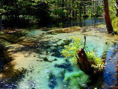 夏の上高地・乗鞍ハイキング vol.3 ~豊かな自然に彩られた 河童橋⇔明神池ハイク 五千尺ホテルでスイーツも♪~