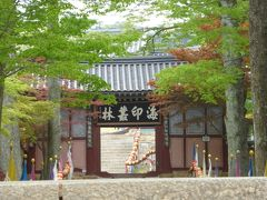 XXII 5月の韓国(釜山→大邸→海印寺)
