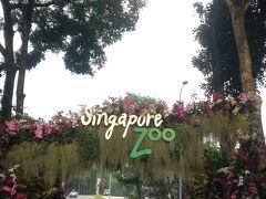 初めてのシンガポール 〜3世代家族旅行〜 5日目