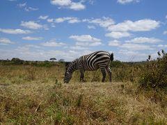 東アフリカ3ヶ国の旅(5) ナイロビ